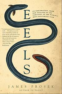 Eels: An Exploration  from New Zealand to the Sargasso  of the World's Most Mysterious Fish