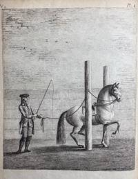 The History and Art of Horsemanship
