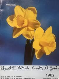 Novelty Daffodils. 1982 - 55th Annual Catalog