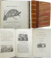 A GENERAL HISTORY OF QUADRUPEDS. The Figures engraved on wood ... by  Thomas Bewick - Hardcover - from Francis Edwards Bookshop (SKU: 269624)