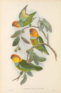 THE BIRDS OF NEW GUINEA Vol. V. (Parrots, Pigeons, Cockatoos, Quail). [volume 5]