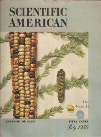 image of The Mystery of Corn from Scientific American, Volume 183, Number 1