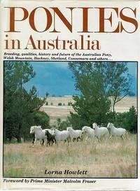 Ponies In Australia