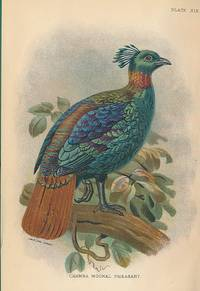 A Hand-Book to the Game-Birds. Two volume set. Lloyd's Natural History