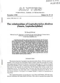 image of The Relationships of Leptodactylus diedrus (Anura, Leptodactylidae)