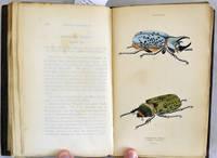 The Natural History of Beetles;  Naturalist's Library,Entomology Vol. II.