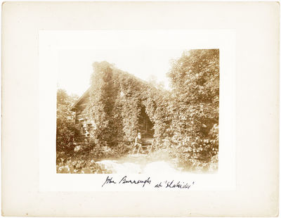 BURROUGHS, JOHN. (1837-1921). American naturalist and essayist who influenced the American conservat...