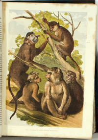 Cassell's Popular Natural History