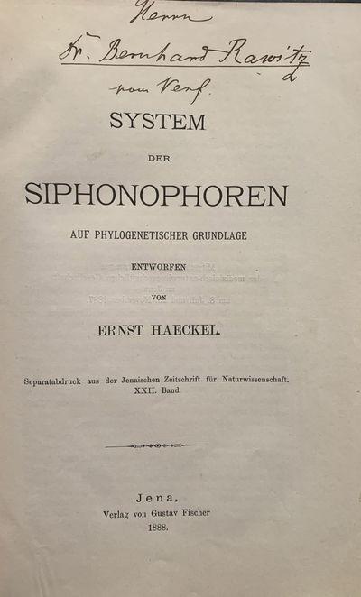 Jena: , 1895. FIRST EDITIONS. Three original offprints. Fro:m Jenaische Zeitschrift für Naturwissen...