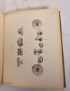 View Image 7 of 8 for Fayencesammlung Georg Kitzinger, Munchen Inventory #176521
