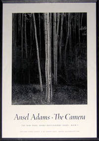 The Camera. Book 1. (Birch trees)