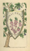 View Image 1 of 15 for A Collection of more than 100 Language of Flowers titles published between 1655 and 1897, with one m... Inventory #28459