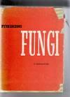 Pythiaceous Fungi, A review.