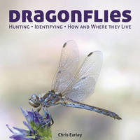 Dragonflies: Hunting   Identifying   How and Where They Live
