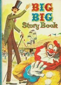 Big Big Story Book