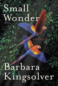Small Wonder : Essays