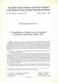 Il lamellibranco Panomya arctica (Lamarck)