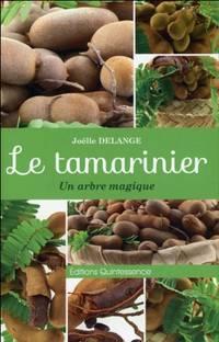 Le tamarinier - Un arbre magique
