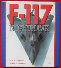 image of F-117 Nighthawk