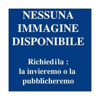Vie ferrate per esperti. Alto Adige - Dolomiti - Lago di Garda - Monti Lessini. Guida con foto aeree.