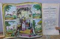THE NEW DOMESTIC COOKERY, or the Housewife's Sure Guide; Containing Complete Instructions for Cooking every description of Viands with Cheapness and Elegance. by BY A LADY.: - from Roger Middleton (SKU: 31777)