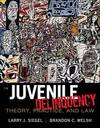image of Cengage Advantage Books: Juvenile Delinquency: Theory, Practice, and Law