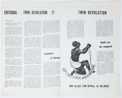 Twin Revolution