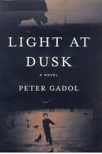 Light at Dusk : A Novel by Peter Gadol - 2000