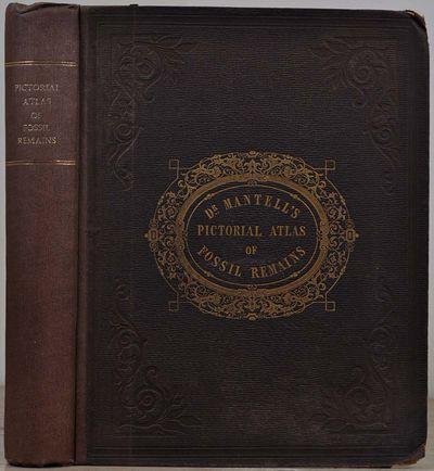 London: Henry G. Bohn, 1850. Book. Very Good+ condition. Hardcover. First edition. Quarto (4to). 207...