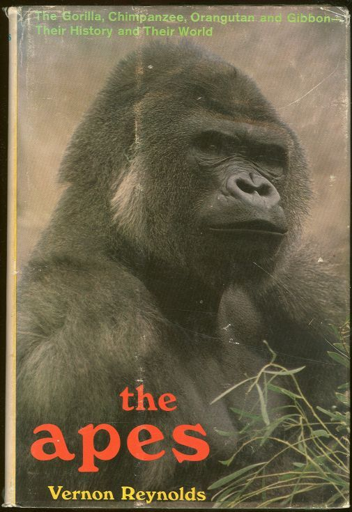 APES The Gorilla, Chimpanzee, Orangutan, and Gibbon- Their History and Their World, Reynolds, Vernon