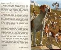 A LADYBIRD BOOK ABOUT DOGS (Series 682)