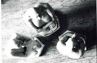 Photograph of the sculpture las 3 mujeres sin pelo 1988
