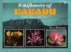 Wildflowers of Kakadu