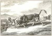 The Bull & Mastiff