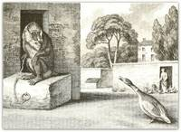 Baboon & Poultry