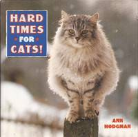 image of Hard Times for Cats!