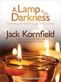 A Lamp in the Darkness : Illuminating the Path Through Difficult Times