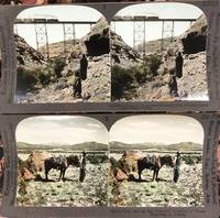 Boxed Set of Grand Canyon Stereoviews in Color