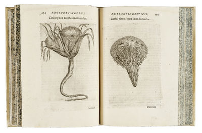 De plantis exoticis libri duo...
