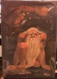 The Urizen Books: The First Book of Urizen; The Book of Ahania; The Book of Los Blake's Illuminated Books  Volume 6