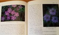 A Book of Blue Flowers.
