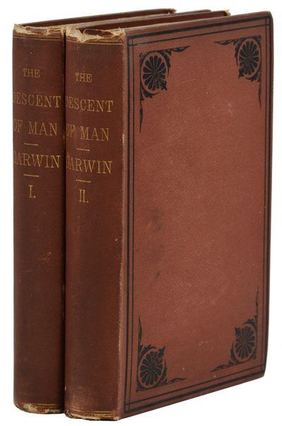 New York: D. Appleton and Company, 1871. First Edition. Good. First American edition. Complete in tw...