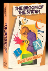 example copy of The Broom of the System